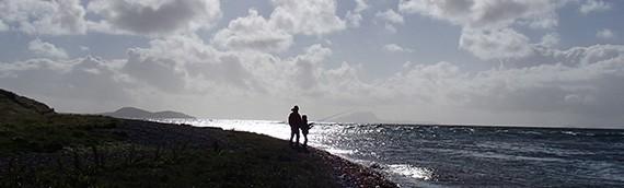 Ballade au bord de l'eau…