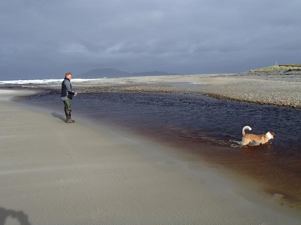 Comme un... chien dans l'eau!