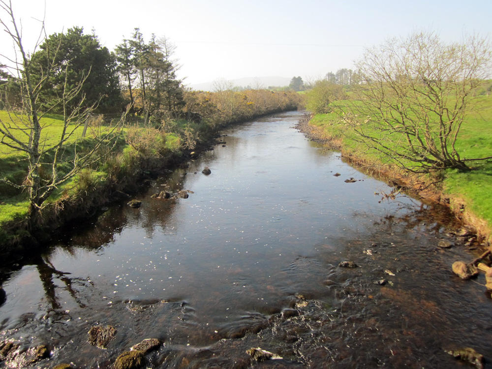 Rivière à truites dans le comté de Mayo.