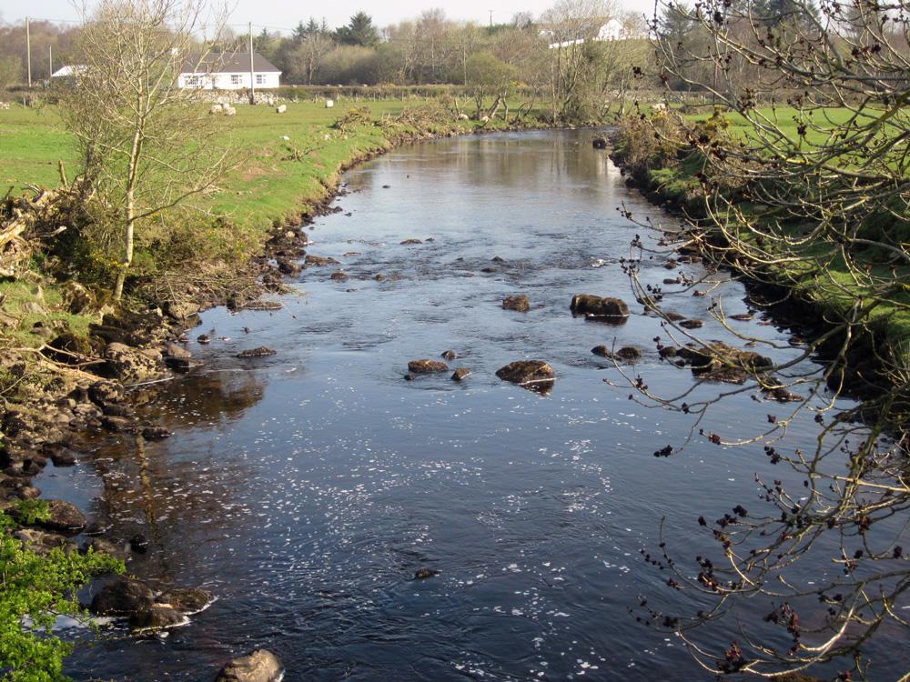 Rivière irlandaise typique, truffée de truites fario.