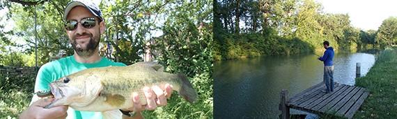 Bass, canal du midi