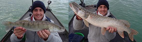 Pêche au lac de Montbel