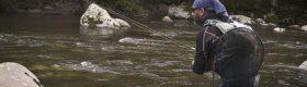 Vicdessos - Ariège (Euro Nymphing & Dry fly fishing)